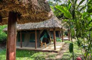 Kibale Forest Camp tents