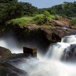 Incredible Uganda, Murchison Falls, Gorilla Trekking