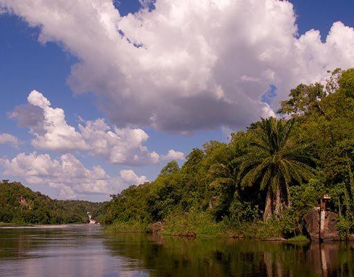 Northern Uganda Safari, Murchison Falls National Park Safari