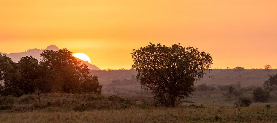 Murchison Falls Tour Safari