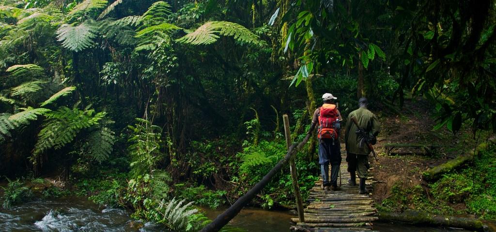Uganda Safari Guides