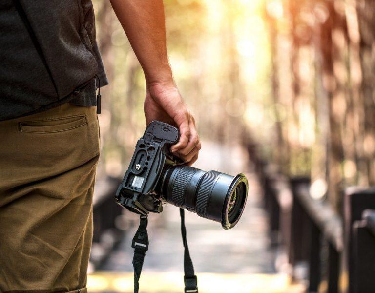 Safari wildlife Photography