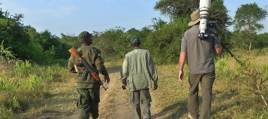 lake mburo walking safari - mburo game drive safari - Best of Uganda Wildlife Safari