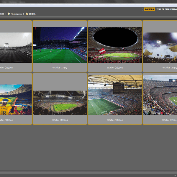 Captura de imagen de Adobe Bridge