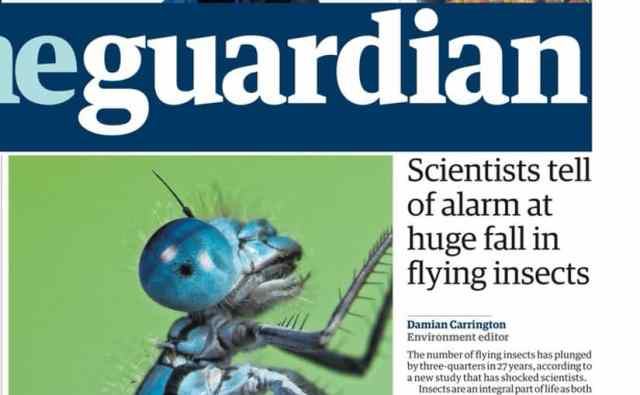 guardian frontpage