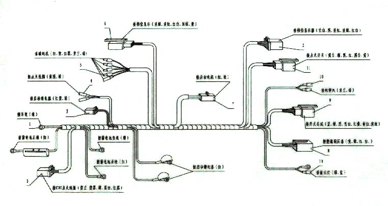 Awe Inspiring Coolster Wiring Schematic Wiring Diagram Wiring 101 Taclepimsautoservicenl