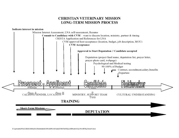 CVM phase chart