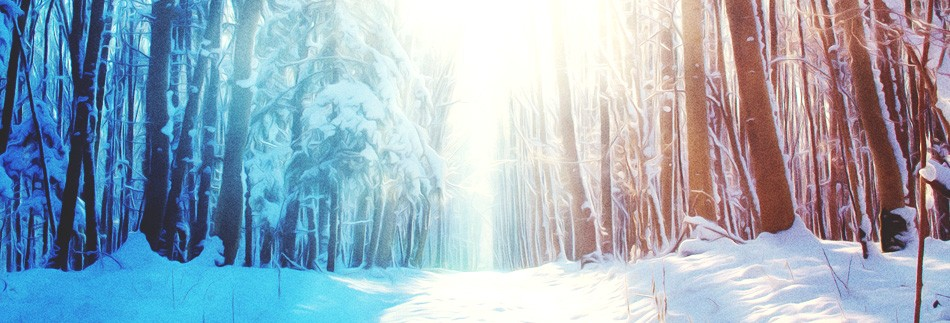 Light of the World Christmas Website Banner