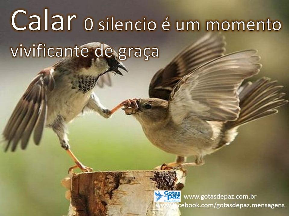 Calar