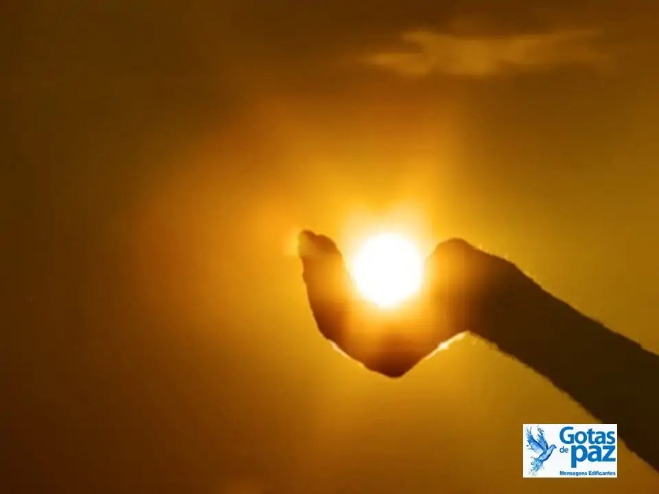 Conectar-se com a luz do Criador é conectar-se com a humanidade. Saiba que existe sempre mais a aprender