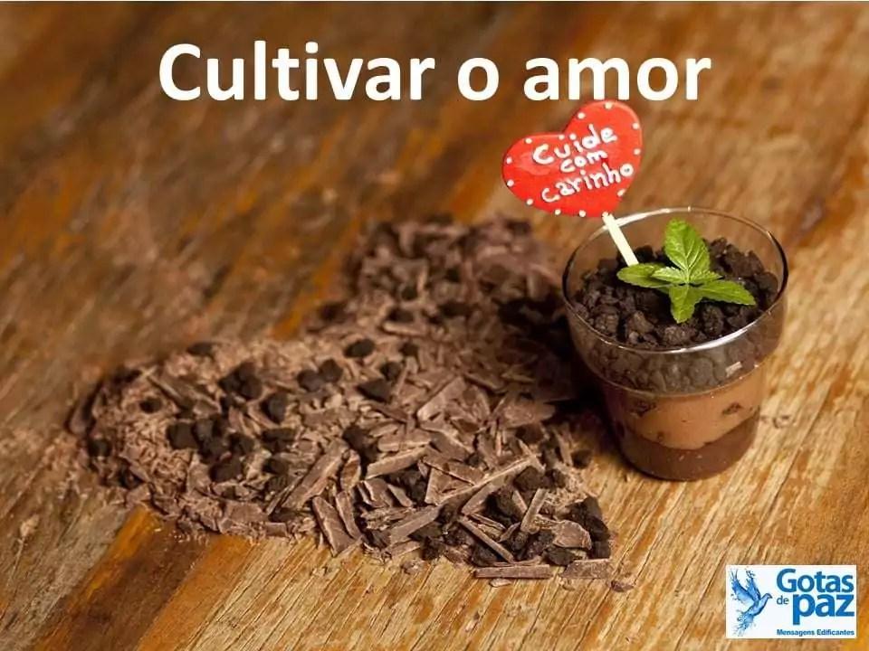 Cultivar o amor