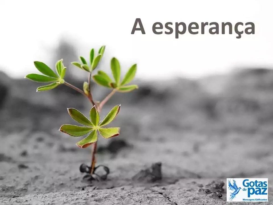 A esperança