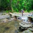 כמדינות רבות בדרום מזרח אסיה, לתאילנד שמורות טבע מדהימות ביופיין ונדירות. מגוון חיות בר וצמחים נדירים נמצאים בשמורות בתאילנד. בדרום תאילנד, לא הרחק מפוקט, נמצאת שמורת הטבע Khao Sok. חברת […]