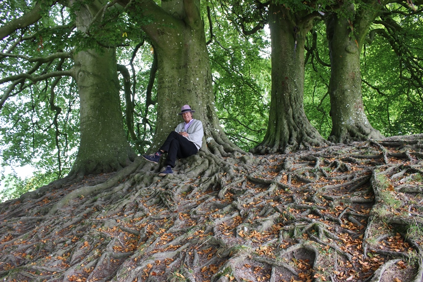 "Relaxing under the ""Tolkien"" trees at Avebury"