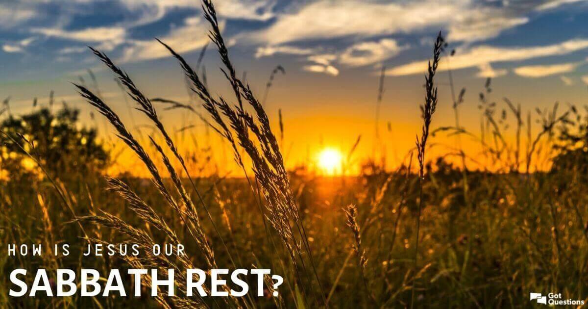 What Does Irt Mean Calfresh