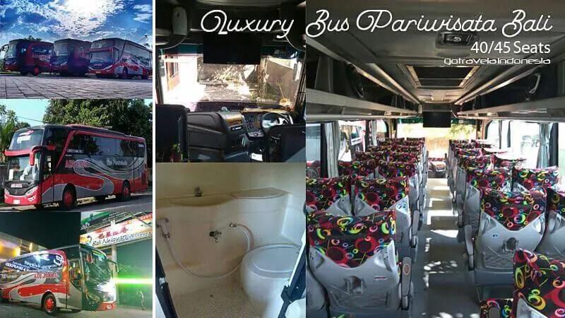 Bus Adi Jaya Bali Transport Interior