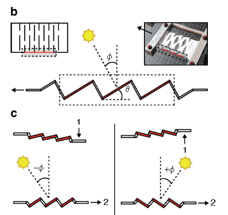 Figure of kirigami design and light absorption courtesy of Lamoureux A et al.