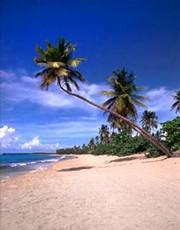 Hawaii_vacation