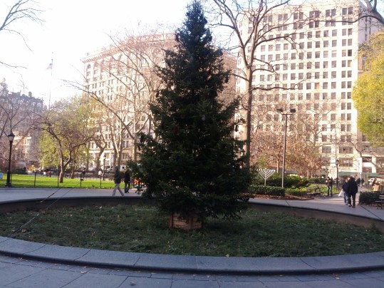 Outdoor, Sunlight - Galaxy Nexus Camera Test Shots