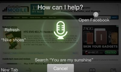 Dolphin Browser iPhone Sonar