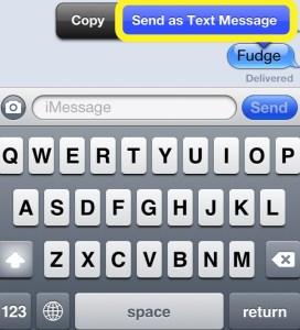 Send as Txt