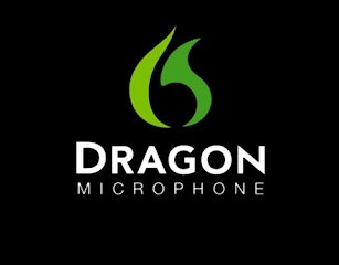 dragon remote mic