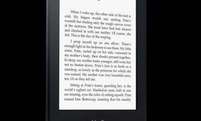 Kindle Paperwhite, Angle