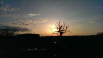 HTC One Sunset Photo Sample.