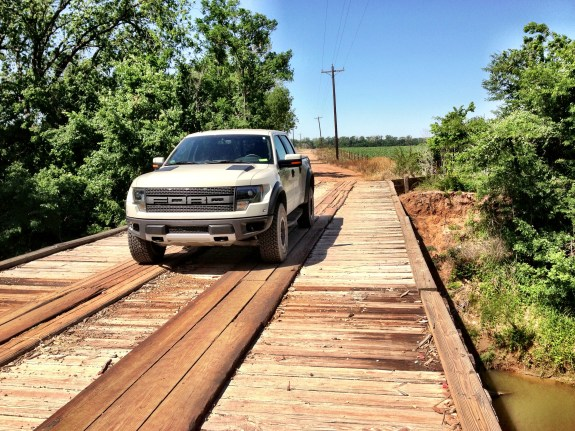 Raptor Bridge