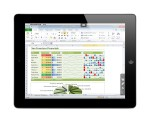 Parallels Access on iPad accessing Windows Excel on a PC
