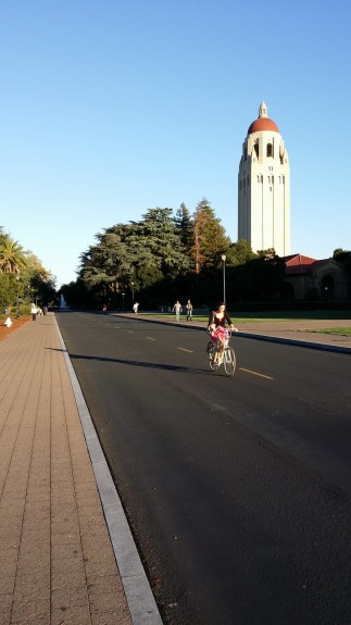 "In good lighting, the camera can ""freeze"" motion so you don't have motion blur, as you can see with the bicyclist here. Detail is lost in the shadows, an issue with the smaller sensor of a smartphone camera despite a high megapixel count."