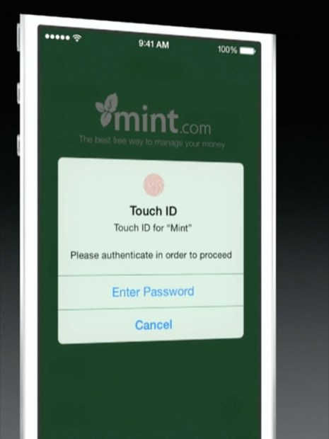 iOS 8 with open Touch ID access for developers