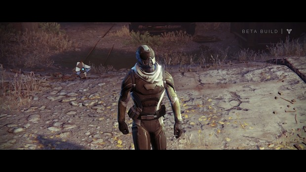 Destiny Beta_20140718160136