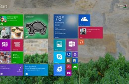 How to MakeTextandApps Larger in Windows 8.1 (9)