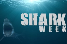 Shark-week-0fficial