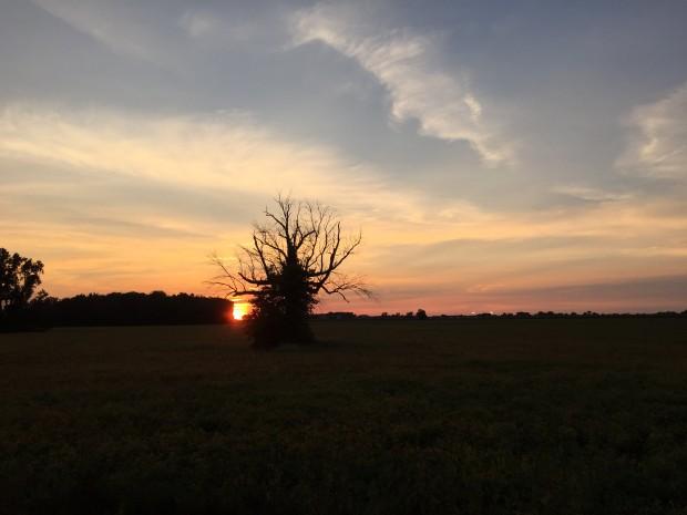 iPhone-6-Sunset