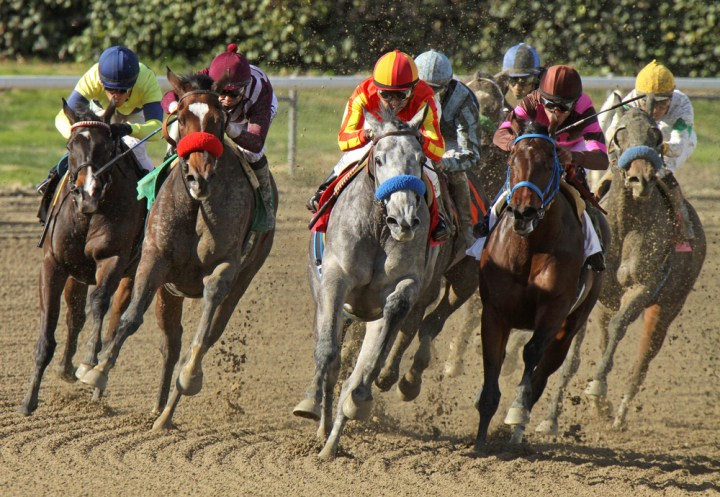 What you need to know about watching the Kentucky Derby Online and betting on the Kentucky Derby from your iPhone. Cheryl Ann Quigley / Shutterstock.com