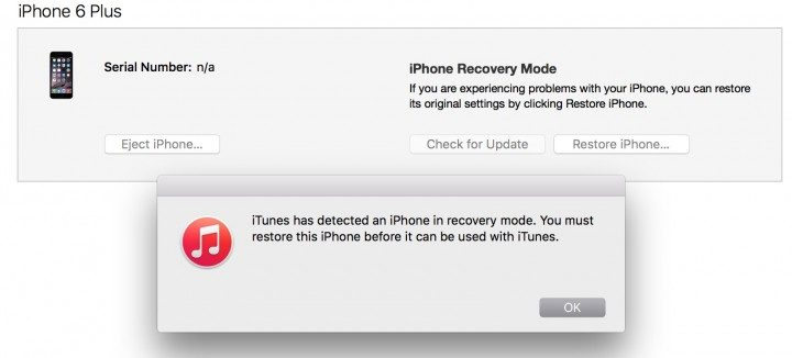 When ready, you will see this iTunes message.