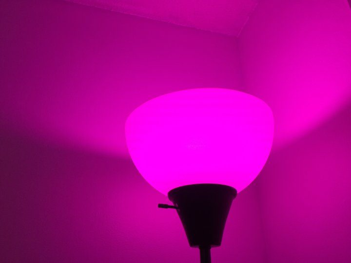 philips-hue-problems-5