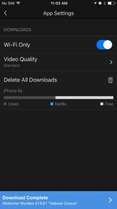 how-to-download-netflix-to-ipho10