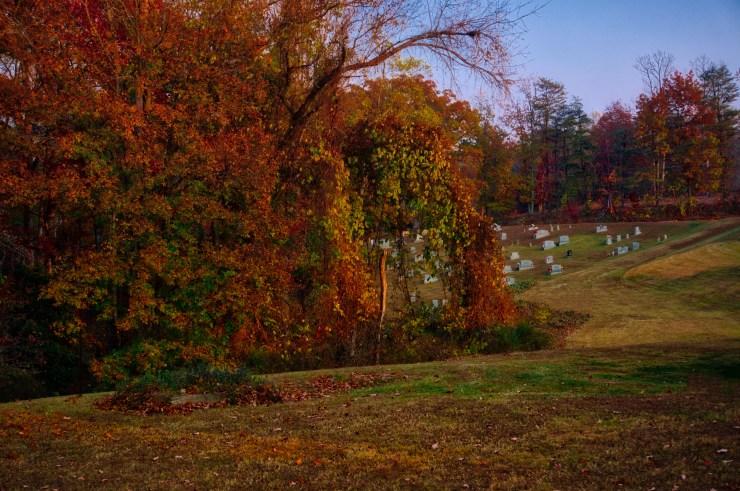 My backyard edited with Aurora HDR 2017