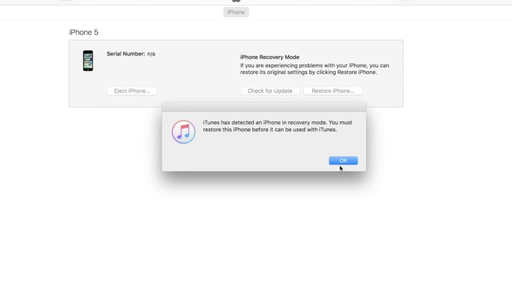 iTunes Will Recognize Your Phone For Restore