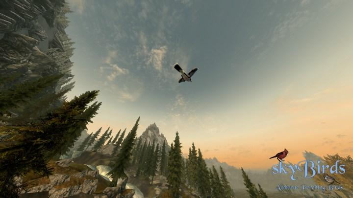 skyBirds