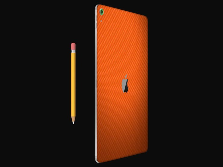 iPad Pro Case or Skin