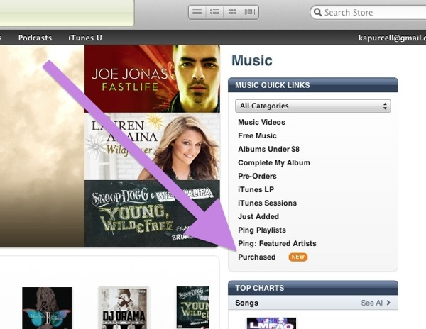 Itunes purchased music