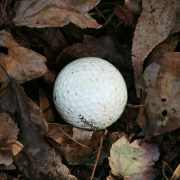 Image of dirty golf ball