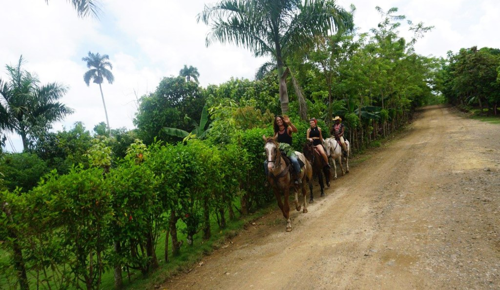 dominican-republic-horseback-riding