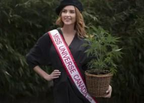 miss universe canada cannabis