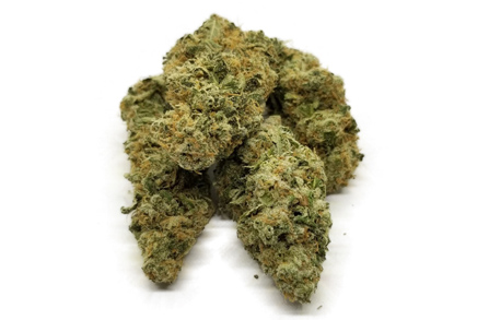 love potion number one strain featured