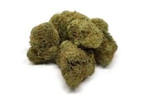 nuken strain weed
